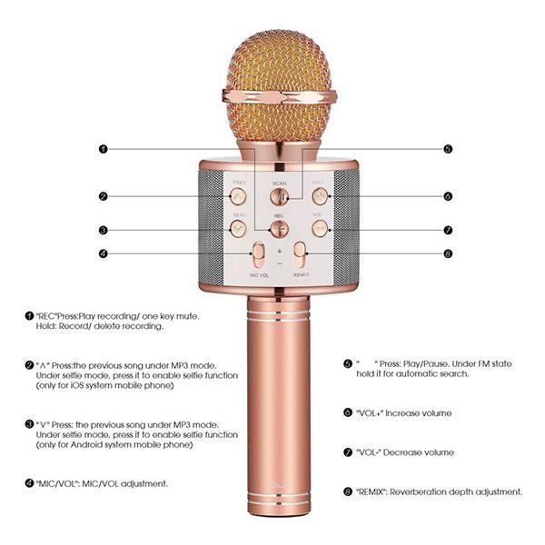 RewardBig Karaoke Wireless Bluetooth Mic with In-built Speaker