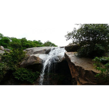 Chennai : Yelagiri Sightseeing Day Tour