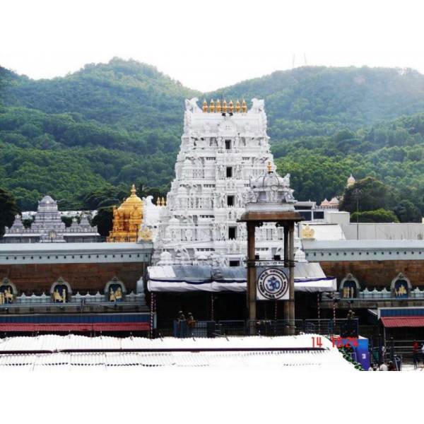 Chennai : Tirupati Day Tour in Private Cab Image